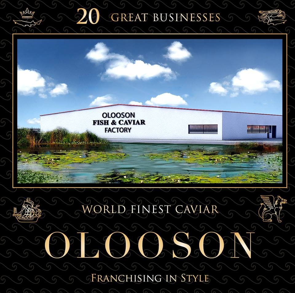 OLOOSON Consultanta Fonduri Europene