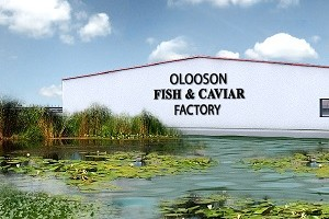 OLOOSON Design Aquaculture Farm