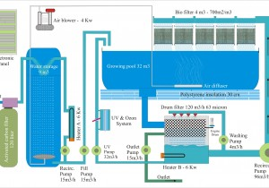 Sistem-acvacultura