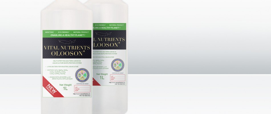 OLOSOON Vital Nutrients