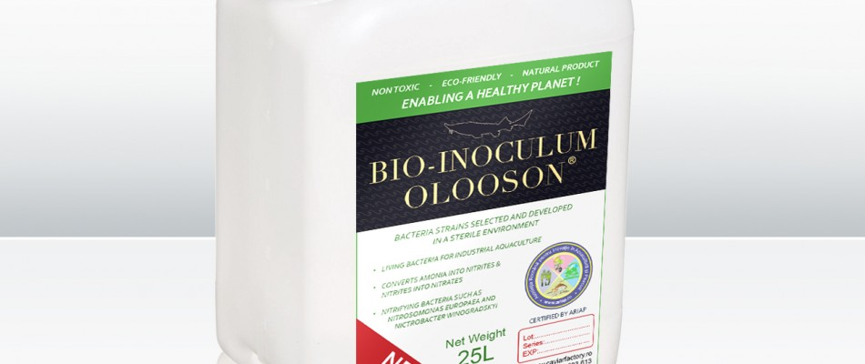 OLOOSON Industrial Bio-Inoculum bio-inoculum industrial