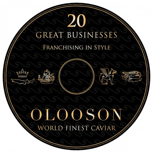 OLOOSON business plan